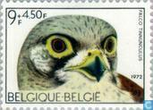 "Postage Stamps - Belgium [BEL] - Solidarity-bird in ""Het Zwin"""