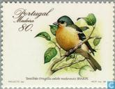 Postage Stamps - Madeira - Birds