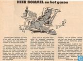 Comic Books - Bumble and Tom Puss - Heer Bommel en het gazon
