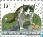 Postzegels - België [BEL] - Katten