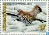 Postage Stamps - Luxembourg - Animals