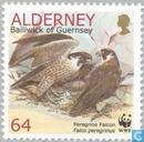Timbres-poste - Aurigny - WWF-Faucon pèlerin