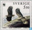 WWF - Vogels