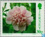 Postage Stamps - Jersey - Botanical Congress