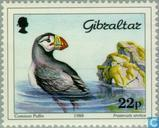 Postzegels - Gibraltar - Vogels