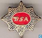 Pins and buttons - BSA - BSA
