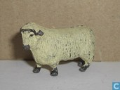 L'objet le plus ancien - Sheep