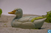 Visible canard blanc (sans herbe)