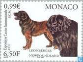 Postage Stamps - Monaco - International dog show