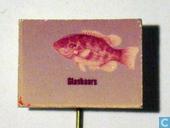 Speldjes, pins en buttons - Dieren: Vissen - Glasbaars