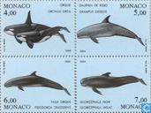 1994 baleines (MON 739)