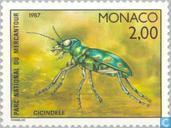 Insecten uit het nationale park