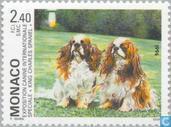 Briefmarken - Monaco - Int. Dog Show