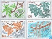 1980 Seasons (MON 412)