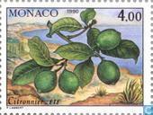 Postage Stamps - Monaco - The Four Seasons