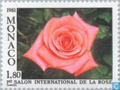 Int. Rose Exhibition