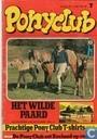 Ponyclub 41