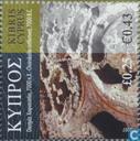 Cyprus History