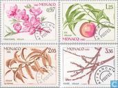 1982 Seasons (MON 454)