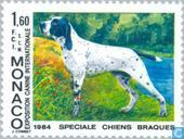 Briefmarken - Monaco - Int. Dog Show