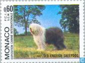 Timbres-poste - Monaco - Int. Dog Show