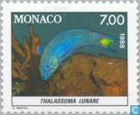 Postage Stamps - Monaco - Fish aquarium museum