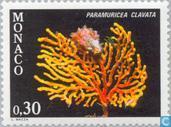 Briefmarken - Monaco - Mittelmeer-Flora