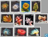 1980 Fauna Mittelmeer