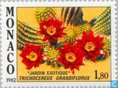 Postage Stamps - Monaco - Exotic Plants
