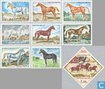 1970 Thoroughbred horses (MON 231)