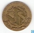 Penningen / medailles - Herdenkingspenningen - Herdenkings Penning NSB