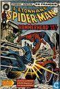 L'etonnant Spider-man