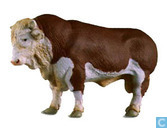 Brown white bull