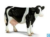 Holstein Koe staand