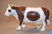 Kuh braun-weiß stehend