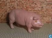 Ältester Artikel - Pig
