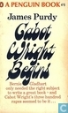 Gabot Wright Begins