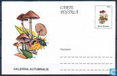 Postcard mushrooms
