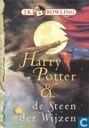 Harry Potter & de steen der wijzen