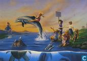 Dolphin Rides