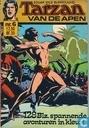 Tarzan pocket 6
