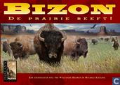 Bizon - De prairie beeft