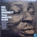 Big Bill Broonzy Sings Country Blues