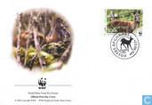 WWF Musk Deer