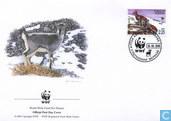 WWF - Blaauwschaap