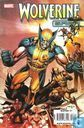 Wolverine Saga