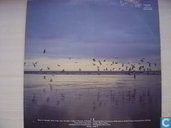 Vinyl records and CDs - Echo & The Bunnymen - Heaven up here