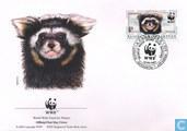 WWF-Spotted polecat