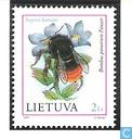 200 multicolore