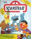 Sesamstraat 6